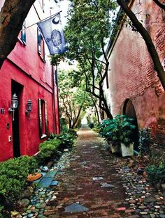 Charleston's Philadelphia Alley. Capture the charm of this historic city on your next weekend getaway! #jfk #travel