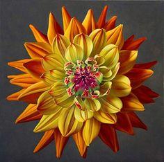"""Une fleur de """"Dahlia"""" très originale par ses couleurs...."""