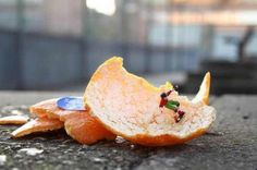 tiny miniature art installations - Google Search