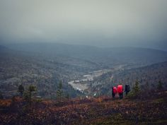 Finnish Lapland - its barren, beautiful natural landscape has an irresistible charm.