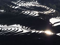 Photographer Documents the Rapidly Disappearing Paddy Fields of Yunnan, China