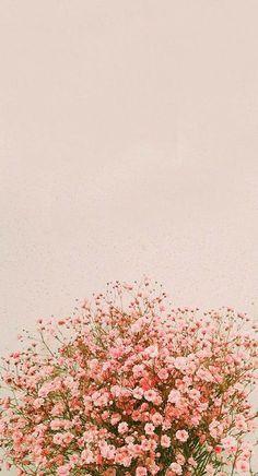 fond d& flores IPhone Background Pictures, Spring - Inside Korea J . Wallpaper Pastel, Frühling Wallpaper, Floral Wallpaper Iphone, Spring Wallpaper, Aesthetic Pastel Wallpaper, Tumblr Wallpaper, Cute Wallpaper Backgrounds, Pretty Wallpapers, Iphone Backgrounds