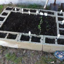 Você pode dividir em 'seções' as espécies que serão plantadas com um canteiro de tijolos.