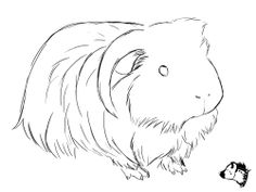 Sketch drawing from GuineaPig Town - would make a cute embroidery pattern!