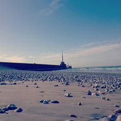 Plage du Havre à marée basse ©dexlh