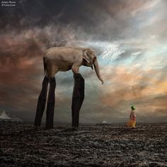 Les #photomontages de #Caras Ionut