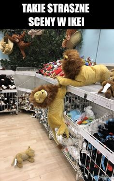 lion king scene found at IKEA - Just For Fun - lion king scene found at IKEA The post lion king scene found at IKEA appeared first on Gag Dad.