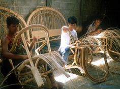 The Nature and Culture of Rattan - The Nature and Culture of ...