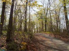 CHARLOTTESVILLE, Albemarle County, Virginia Land For Sale - 9.98 Acres