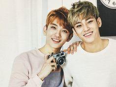 Seventeen ~ Joshua and Mingyu
