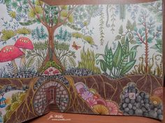 Here I Go Again: Enchanted Forest - more colouring!!