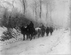 Newfoundland Regt transport at Hesdin,20th Dec 1917