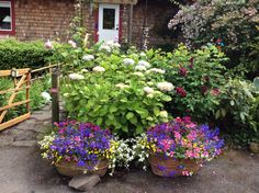 Flower containers 2014. Gabriola is.