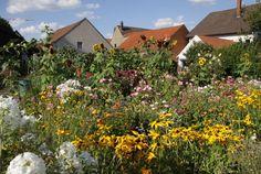 Bauen.de erklärt, wie aus einem Garten mit einfachen Mitteln ein Naturgarten mit bunten Blumenwiesen, lauschigen Plätzen und Gartenteich entsteht.