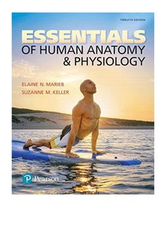 Essentials of Human Anatomy & Physiology Edition) - byElaine N. Marieb(Author),Suzanne M. Keller(Author) For one-semester Anatomy & Physiology courses. Perfect Image, Perfect Photo, Love Photos, Cool Pictures, Human Anatomy And Physiology, Writing Styles, New Chapter, Thing 1 Thing 2, Bestselling Author