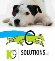 Gift certificate for a basic or advanced manners class at K9 Solutions ($137 value).