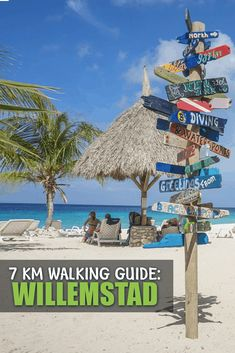 In this guide we will share all the things you must do in Willemstad. Willemstad has many things to do and visit and here we include them all. Willemstad, Cruise Vacation, Vacation Spots, Vacations, Cool Places To Visit, Places To Go, Cruise Pictures, Central America, South America