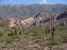Quebrada de Humahuaca es un profundo y angosto surco de origen tectónico-fluvial ubicado en Jujuy, en el noroeste argentino.