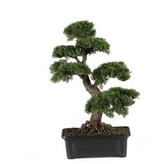 Nearly Natural Cedar Bonsai Tree 24 in ($110) ❤ liked on Polyvore featuring home, home decor, floral decor, plants, fillers, flowers, nature, decor, artificial flower stems and fake bonsai tree