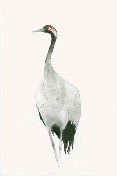 Fine Art Print from Original Watercolour by dearpumpernickel: