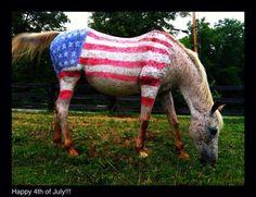 Patriotic horse shows 'true colors'