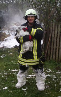 HE SAVED A BUNNY Feuerwehr Gotha rettet 40 Verwandte des Osterhasen
