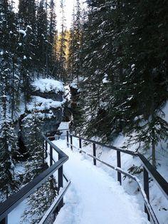 . Christmas Mood, Winter Landscape, Hygge, Winter Wonderland, Paths, Landscapes, Photo Wall, Snow, Seasons
