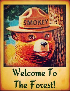 Items similar to Smokey Bear Welcome To Forest Sign Made in USA Limited Edition Officially Licensed U. Forest Service Rustic Log Cabin Lodge Vintage Image on Etsy Vintage Images, Vintage Posters, Vintage Signs, Vintage Pictures, Bear Signs, Wildland Firefighter, Smokey The Bears, Vintage Cabin, Rustic Cabin Decor