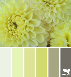 Gray, green and brown