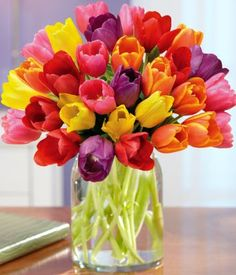 Tulips are my favorite flowers in the entire world--love this brightly colored arrangement