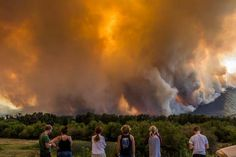 The Biggest Story In America That No One Is Talking About - Massive Wildfires Burn Over A Million Acres - Chicks On The Right Fight For Freedom, Freedom Of Speech, Weather And Climate, Climate Change, Lions Photos, Wildland Fire, Big Sky Country, The Future Is Now, Up In Smoke