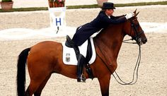 very cute dressage pic