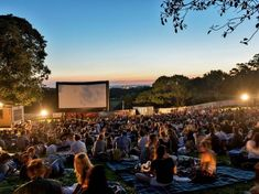 Moonlight Cinema | Centennial Park | Film in Sydney