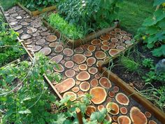 DIY Garden Paths And Backyard Walkway Ideas Looking for something to do with larger trimmed branches, or a dead tree after removal? Make mosaic wooden garden paths. Garden Paths, Garden Art, Garden Landscaping, Garden Design, Cut Garden, Landscaping Ideas, Backyard Ideas, Backyard Walkway, Garden Beds