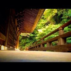祖師堂(日蓮宗寺院で日蓮を祀るお堂)の裏手にハイキングコースがありますが、この森の中を歩いてきたのかあ…と眺めるのもまた面白いです。本当に素敵なお寺なので、祇園山ハイキングコースと一緒に是非訪れて下さい。 Garden Bridge, Outdoor Structures
