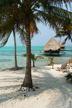 Glovers Reef Belize