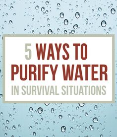 How To Purify Water – Survival Water Purification\ -By Leighton Taylor on February 28, 2014