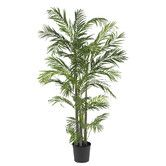 Found it at Wayfair - Areca Palm Tree in Pot
