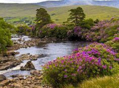 Abhainn Oirimh Erriff River, Ireland