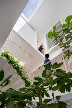Garden Home At Rienzi by AD Lab - a multi-storey house in Singapore - the architects have managed to create a sensation of surprising openness and limitless space