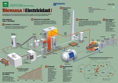 Infografía energía biomasa Infografías en energías renovables aprende a base de imágenes                                                                                                                                                                                 Más