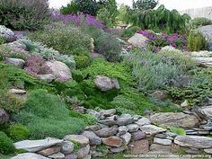 Rock Garden Ideas Pinterest Gardens Good
