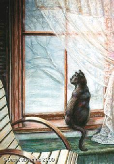 images of cats in windows - Google Search