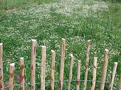 Bild von Woodline Staketenzaun Dolomiten Kastanie - Abstand 5cm - 120cm x 10m
