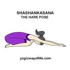 ardha kapotasana  the pigeon pose  asana or yogic poses