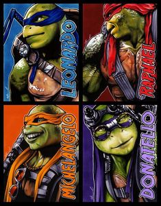 Ninja Turtles 2014, Ninja Turtles Movie, Teenage Ninja Turtles, Ninja Turtles Art, Cute Turtles, Power Rangers, Tmnt Wallpaper, Tortugas Ninja Leonardo, Tmnt Swag