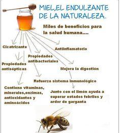 medicina natural para la gota que alimentos no comer cuando tienes acido urico medicina acido urico en sangre
