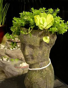 Learnhow to create a planter made with hypertufa, a material that has an ancient, hand-hewn quality. They are perfect for alpines, succulents, mosses and more. Head Planters, Diy Planters, Garden Planters, Succulent Planters, Succulents Garden, Concrete Garden, Concrete Planters, Garden Crafts, Garden Projects