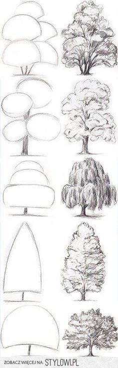szkice drzew Like & Repin. Noelito Flow. Noel Music.