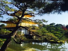From historic to contemporary sites, here are the five must-see places in Japan!